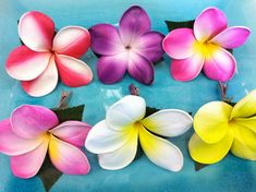 YOU choose 3x plumerias hair flowers for only $15.00 Great for any special occasion....... The plumeria flower is made of latex and comes with a natural green leaves. It has a alligator clip for easy attachment to the hair and is very comfortable to wear. *Please convo us