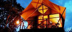 Uganda: QENP: Queen Elizabeth Bush Lodge.  Mid range, close to the Kazinga Channel and thus wildlife.