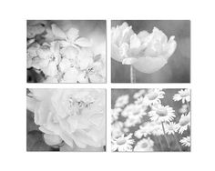 Flower Print Set, Black & White Floral Art, Poppy, Peony, Daisies