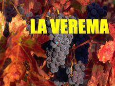 Verema by poemus via slideshare