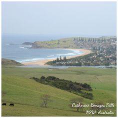New South Wales coastline