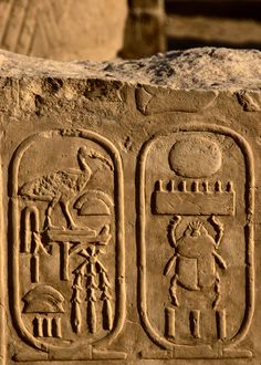 Cartouche of Thutmose IV by Scott Sherrill-Mix