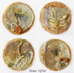 Velvet moth studio Diana Taylor