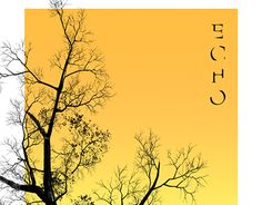 "Check out new work on my @Behance portfolio: ""Echo poster"" http://be.net/gallery/41072893/Echo-poster"
