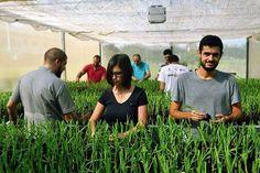 Um curso de Engenharia Agrícola diferenciado, 1º lugar no ranking do Guia do Estudante em 2015!