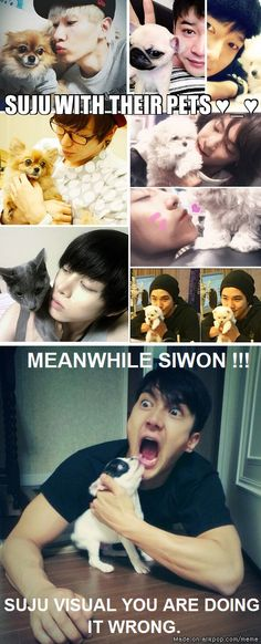 OMG Siwon, you're scaring the poor dog! Haha :)