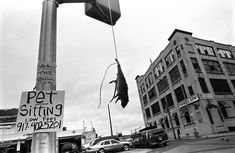 GOOD RAT - Vladimir 'Boogie' Milivojevich. (All photos were taken between  2003-2006 in BedStuy, Bushwick and Queensbridge, which are considered to be some of the roughest neighborhoods in NYC) I love the fact that someone is advertising pet sitting with a mouse carcass hanging next to it.