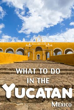 Mérida, Izamal, San Ignacio cenote, and salbutes! Some of our favorite things to do (and eat) in the Yucátan, Mexico.