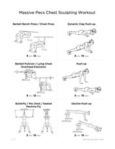 Workout For Men And Women Chest WorkoutsWorkouts
