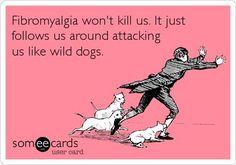 #Fibromyalgia won't kill us. It just follows us around attacking us like wild dogs.