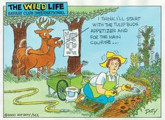 TheEasyGarden - Gardening Forum / Garden humor thread..