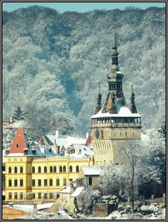 Sighisoara, Dracula's birth city Romania, Paris Skyline, Places To Visit, Mansions, House Styles, City, Travel, Viajes, Manor Houses