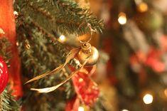 do it yourself divas: DIY: Harry Potter Snitch Ornament