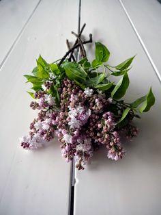 Send FIELDWORK FLOWERS Portland OR Florists Flower Shop & Nursery Best Portland Flower Delivery