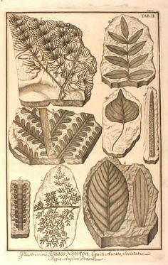 Sammlung vieler historischer Abbildungen