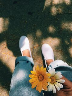 Yellow Aesthetic Pastel, Aesthetic Pastel Wallpaper, Flower Aesthetic, Tumblr Photography, Creative Photography, Flower Iphone Wallpaper, Bokeh Wallpaper, Profile Pictures Instagram, Vsco Pictures