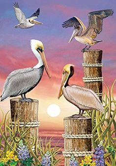 "Pelicans at Sunset Summer House Flag Nautical Pier 28"" x ... http://www.amazon.com/dp/B019441Y1G/ref=cm_sw_r_pi_dp_Crrpxb00JCCFP"