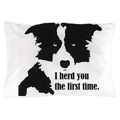 The Shetland Sheepdog originated in the and its ancestors were from Scotland, which worked as herding dogs. These early dogs were fairly sm Border Collie Art, Border Collie Humor, Shetland Sheepdog Puppies, Dogs And Puppies, Doggies, Sheep Dogs, Collie Mix, Crazy Dog, My Animal