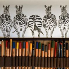 #fbf to the days in the studio two and a half years ago when I started drawing and designing my debut Safari wallpaper range. It seems like so long ago now and actually back then, the studio was the kitchen table! #zebra #drawing #illustration #design #details #wallpaper #studio #behindthescenes #inspiration #home #interiors #interiordesign