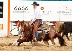 Cutting western quarter paint horse appaloosa equine tack cowboy cowgirl rodeo ranch show ponypleasure barrel racing pole bending saddle bronc gymkhana Appaloosa, Rodeo, Paint Horse, American Quarter Horse, Quarter Horses, Cutting Horses, Reining Horses, Ranch, Western Riding