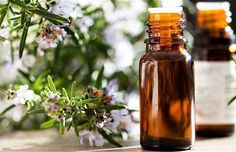 Rosemary Shampoo Herbal Remedies, Home Remedies, Natural Remedies, Essential Oil Uses, Young Living Essential Oils, Thieves Oil Recipe, Eucalyptus Citronné, Natural Disinfectant, Perennial Vegetables