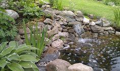 Trädgårdsblogg om trädgården och mina trädgårdsprojekt. Rosor, bäck, damm, woodland, medelhavsinspirerat med mera.
