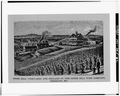 41.  Photocopy of engraving [from History of Franklin, Jefferson, Washington, Crawford and Gasconade Counties, Missouri (Chicago: Goodpeed Publishing Co., 1888)] Wittenberg-Sorber, St. Louis, engraver, ca. 1888 'STONE HILL VINEYARDS AND CELLARS OF THE STONE HILL WINE COMPANY, HERMANN, MO.' - Stone Hill Winery, 401 West Twelfth Street, Hermann, Gasconade County, MO