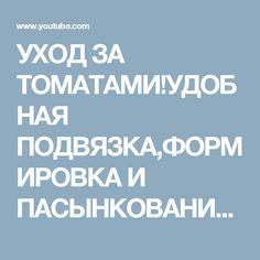 УХОД ЗА ТОМАТАМИ!УДОБНАЯ ПОДВЯЗКА,ФОРМИРОВКА И ПАСЫНКОВАНИЕ ТОМАТОВ! - YouTube