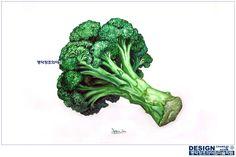 #그림잘그리는학원 #명덕창조의아침 #대구미술학원 #대구입시미술학원 #창조의아침 #미술학원 #입시미술 #기초디자인 #기디 #개체 #개체묘사 #개체표현 #사실묘사 #브로콜리 #broccoli