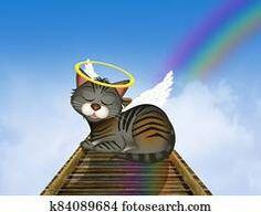 cat on the rainbow bridge in the heaven Black Angel Wings, Black Angels, Hummingbird Wings, Angel Illustration, Wings Design, Free Cartoons, Angel Statues, Flash Art