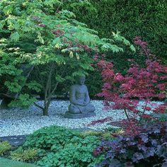 10 best feng shui tree u2049 images feng shui tree feng shui house rh pinterest com
