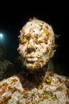 Night - Underwater Sculpture by Jason deCaires Taylor Jason Decaires Taylor, Underwater Sculpture, Environmental Art, Natural World, Sculptures, Corals, Collages, Organic, Night