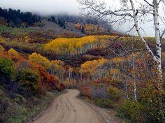 Kebler Pass toward Crested Butte, CO