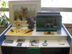 Science Area provocation. Please go to my blog to read about the use of provocations.