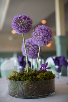 A Pretty Purple and Gray Ohio Wedding at Aston Oaks with One Adorable Peacock Cake - Fab You Bliss