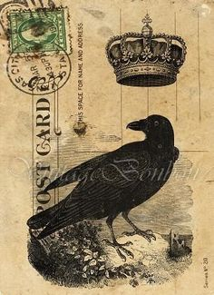 Crow with crown postcard. I am smitten by crows because my mother told us a children that all crows speak only the truth. A lovely thought.