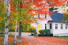 Incorporated in 1962, Sugar Hill is one of the youngest towns in New Hampshire. Named for its abundance of sugar maples, it offers plenty of leaf peeping opportunities, in addition to its charming Country Church, shown here, when covered in bright foliage.   For more information, visit Sugarhillnh.org.   - CountryLiving.com