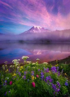Good Morning World! By @PaulHewittPhoto