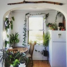 Love this wild kitchen from @stephjalovely thank you for sharing your #jungalowstyle !