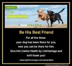 Dogs benefit from reducing oxidative stress too! Be His Best Friend: For all the times  your dog has been there for you, now you can be there for him. Give him Canine Health by LifeVantage and he'll thank you! - www.mylifevantage.com/samandlisa