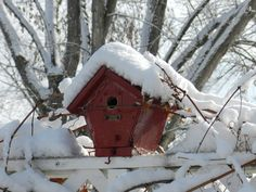 This red birdhouse came from an antique store in Jordan. It has been used several times by the black capped chickadee.
