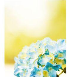 #beautifulcolor #inspiredbycolor