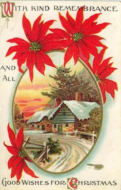 POINSETTIA~Antique Postcard with poinsettias,and a cabin in winter.