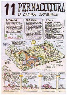 Permacultura (la cultura sostenible)