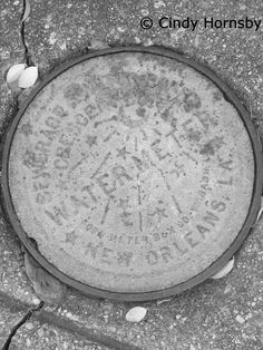 Water Meter Cover in the Crescent City, Garden District, New Orleans, LA
