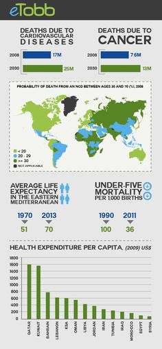 General health infographics about the Arab World.
