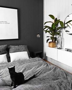 Black Vibes! Für einen luxuriösen Chic sorgen Wohnaccessoires in edlem Schwarz. Mit einer schwarzen Wand verleihst Du Deinem Schlafzimmer eine Eleganz, die dich bis in das Reich der Träume begleitet. Schwarz ist die perfekte Wahl, denn Schwarz vermittelt Geborgenheit und gilt als die Farbe der Nacht. // Schlafzimmer Wandfarbe Schwarz Bett Bettwäsche Grau Katze Kommode Skandinavisch Bild Pflanzen Deko Dekoration Kissen #SchlafzimmerIdeen #Wandfarbe #Schlafzimmer #Skandinavisch @oursweetliving