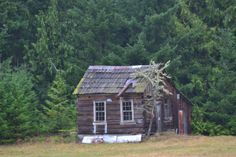 Old Cabin in the Woods | ... ://depositphotos.com/6995909/stock-photo-Old-house-in-the-woods.html