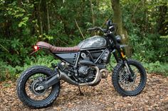 scrambler desert sled modified at DuckDuckGo Dominator Scrambler, Ducati Scrambler Custom, Ducati Cafe Racer, Ducati Motorcycles, Scrambler Motorcycle, Bicycle Decor, Bicycle Shop, Desert Sled, Bicycle Painting