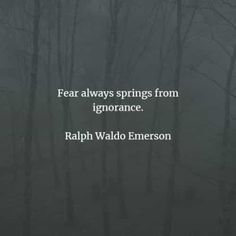 67 Ignorance quotes and sayings that will inspire you. Here are the best ignorance quotes to read from famous authors that will surely inspi. Feeling Stupid, How Are You Feeling, Ignorance Quotes, Being Ignored Quotes, Harlan Ellison, Michel De Montaigne, Noam Chomsky, Isaac Newton, Ralph Waldo Emerson